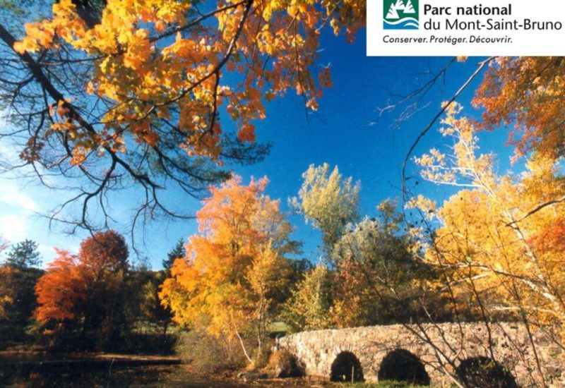 Le Parc national du Mont-Saint-Brunomaintientdes vignettes jusqu'en 2022