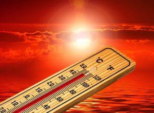 Saint-Bruno prend un engagement pour le climat