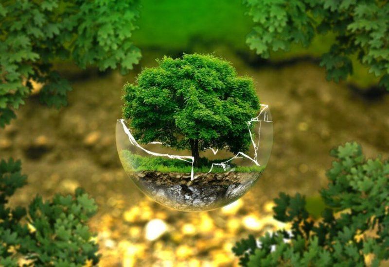 Un nouveau conseiller en développement durable et environnement à La Prairie