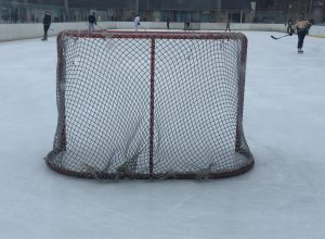 Une nouvelle ligue de hockey fait son apparition