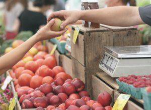 Naissance possible d'un marché fermier pour le Vieux-Longueuil
