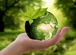 Développement durable environnement