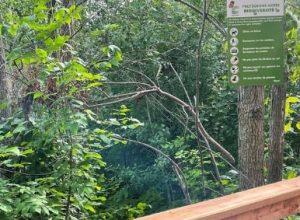 Nouveau sentier au Pavillon de la biodiversité à Saint-Constant